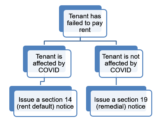 COVID-19 remedial and rent default notice processes